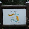 写真: 多摩自然遊歩道
