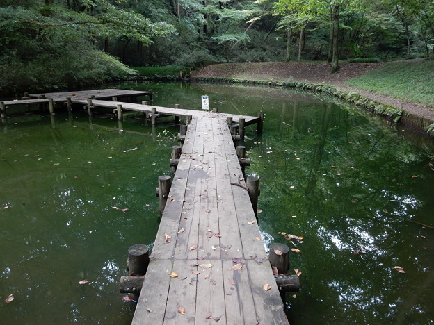 下池の桟橋