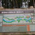 写真: 吾妻峡の河原を歩く散歩みち