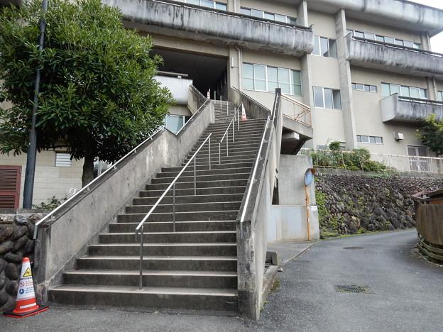 公民館の階段
