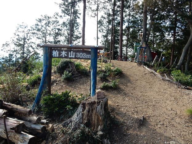 柏木山(303m)