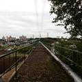 写真: 大貫谷戸水路橋上