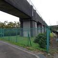 写真: 橋に沿って