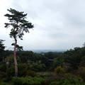 写真: 東
