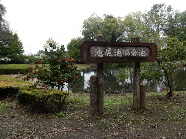 写真: 池尻池