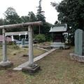 Photos: 日枝神社