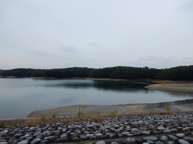 写真: 狭山湖