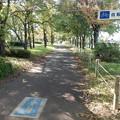 写真: さきたま緑道