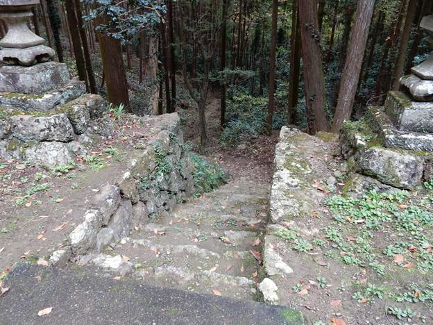 正面の参道