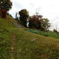 Photos: 左