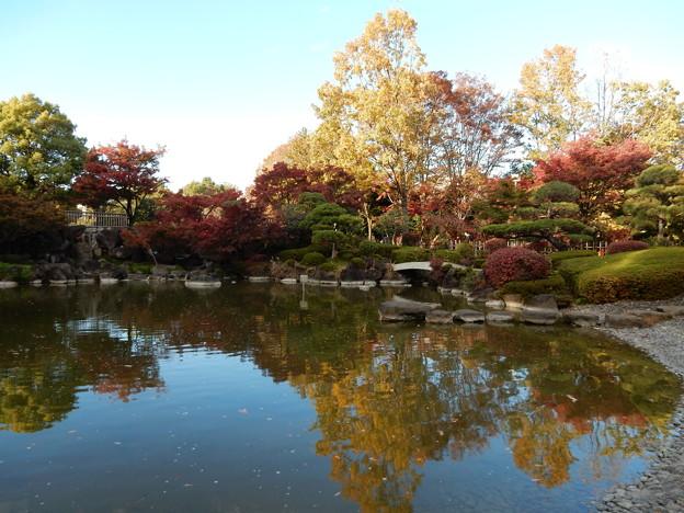 府中の森公園 日本庭園