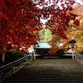 Photos: 瑠璃門