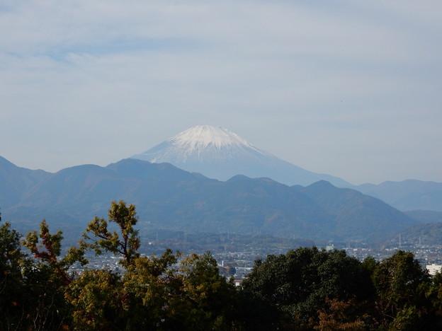 からの富士山