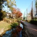 二ヶ村緑道