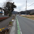 Photos: 花と緑の遊歩道