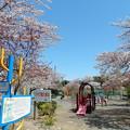 Photos: みなみだいら公園
