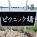 Photos: ピクニック橋