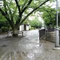 Photos: 大河原公園