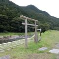 Photos: 鳥居