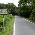 Photos: 林道 将軍沢線 起点