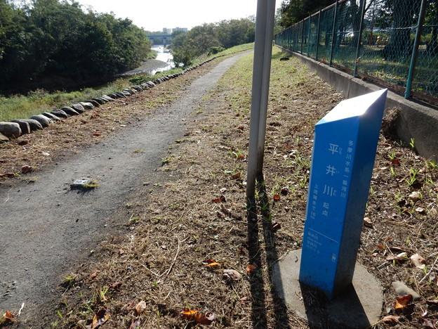 平井川起点