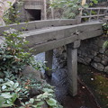 Photos: 石橋