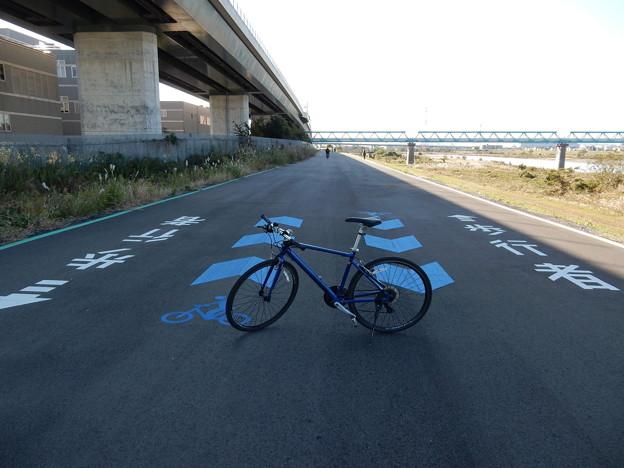 県道409号相模川自転車道