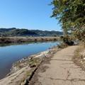 Photos: 相模川沿い