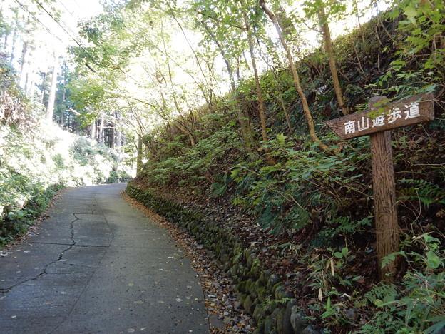 南山遊歩道