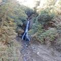 Photos: 大沢の滝