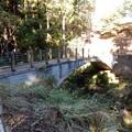 Photos: 冒険の森連絡橋