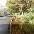 Photos: 黒川清流公園