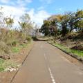 Photos: 北浅川