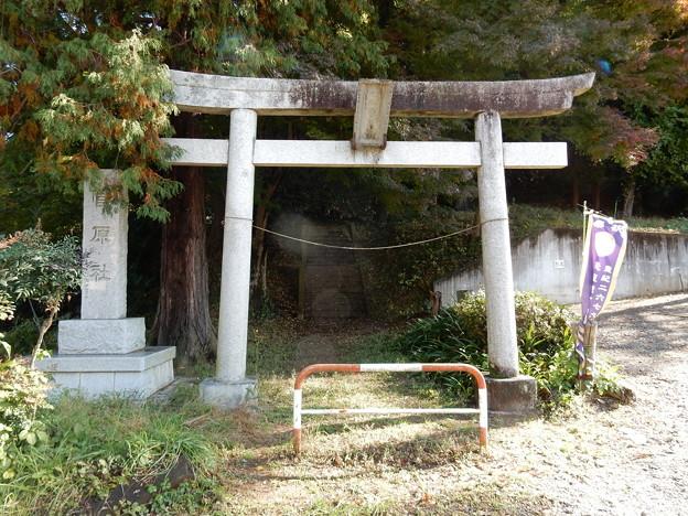 Photos: 菅原神社