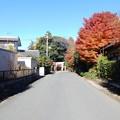 中野原稲荷神社