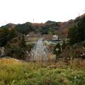 Photos: 東