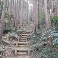 Photos: 急階段