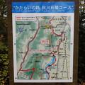 Photos: 秋川丘陵コース