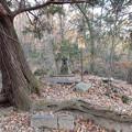 Photos: 八雲神社