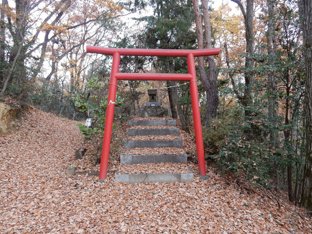 雹留山の神社