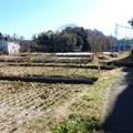 Photos: 水路