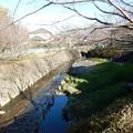 Photos: 平瀬川