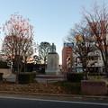 Photos: 渋沢栄一像