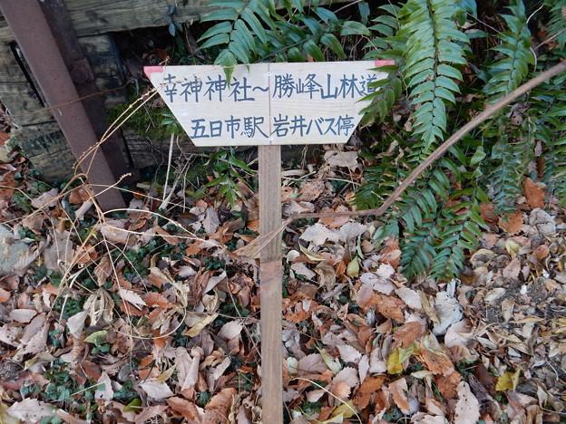 Photos: 道標