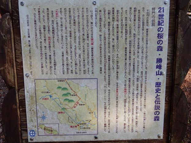 将門の伝説