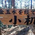 Photos: 小机