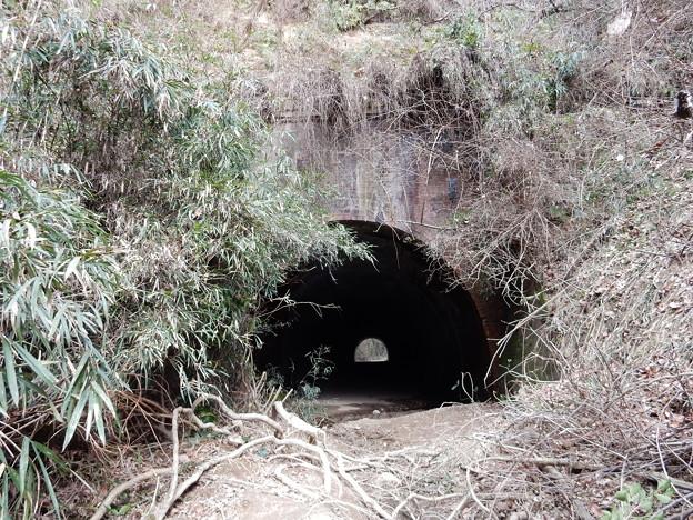 Photos: 畑トンネル