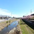 Photos: 空堀川