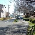Photos: 府中街道越え
