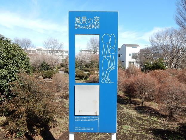 苗木のある西東京市